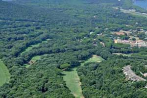 a lot of trees around the Tirrenia golf course